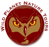 Wild Planet Nature Tours